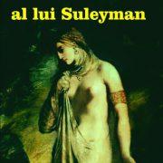 ultimul-vis-al-lui-suleyman_1_fullsize